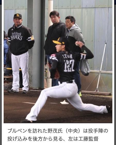 日刊スポーツより
